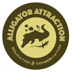 kissagator-logo-conserv2
